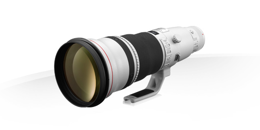 Canon EF 600mm f/4L IS II
